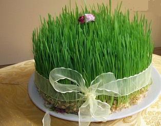 سبزه عید شیک