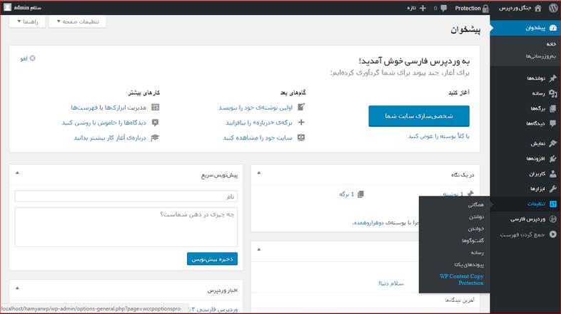 آموزش کار باافزونه WPcontent copy protector