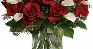 نگهداری گل در منزل