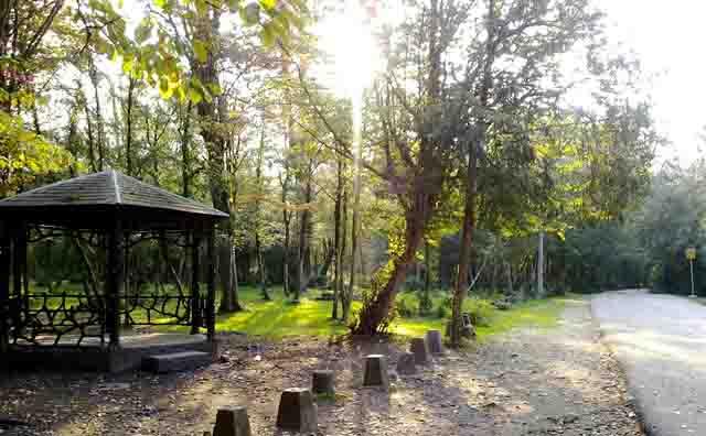 پارک شیان لویزان